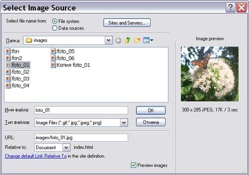 dreamweaver диалоговое окно Select Image Source