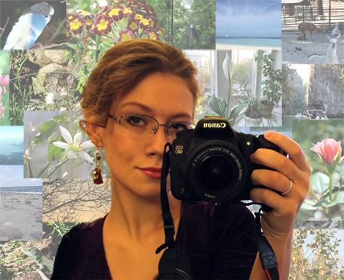 Авторские фотографии в качестве картинок для сайта